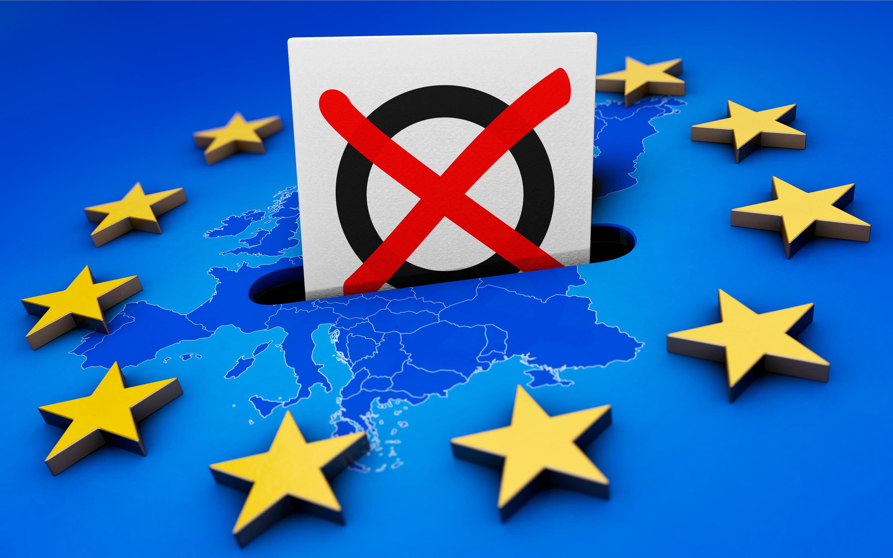 Die Grauen Europawahl